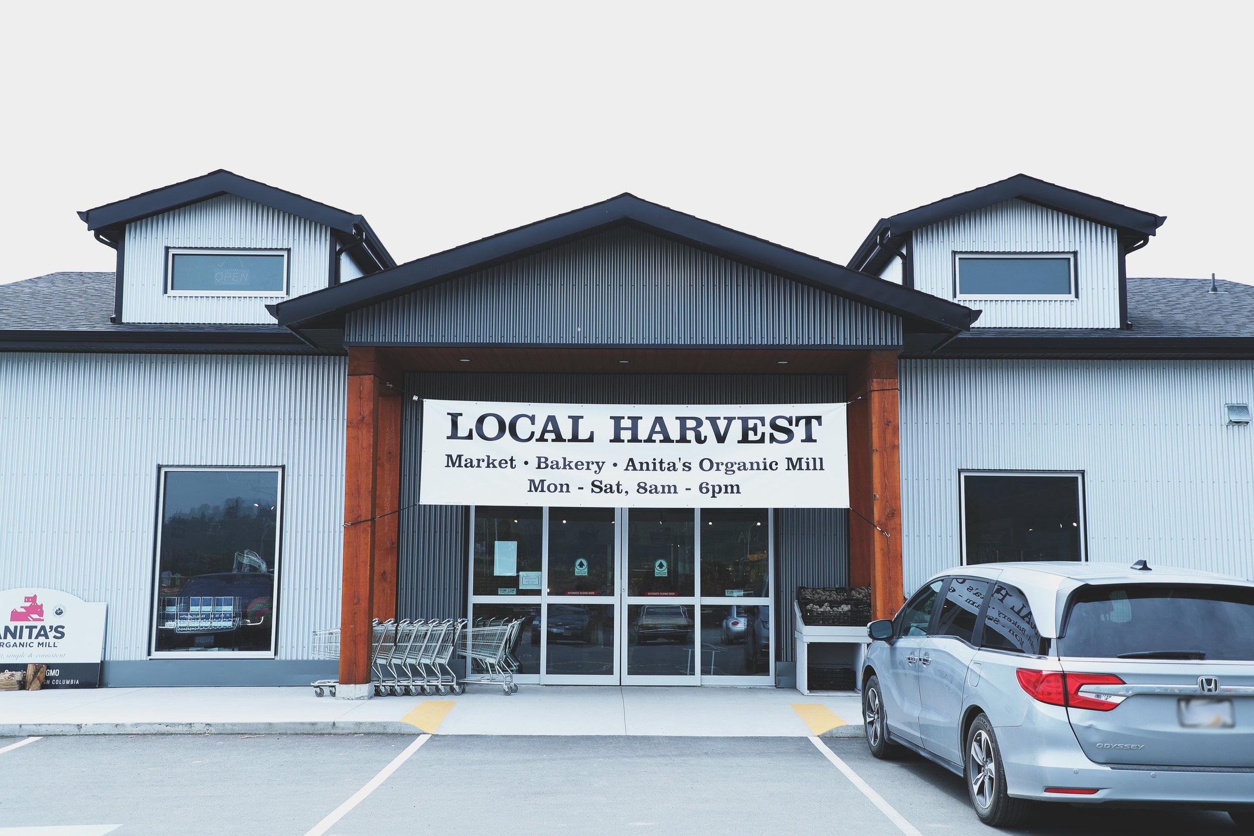 Local-Harvest-9.jpg