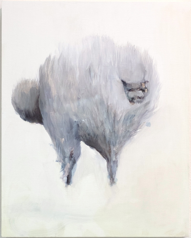 Fluffy cat , 2015, oil on wood, 16 x 20 inches