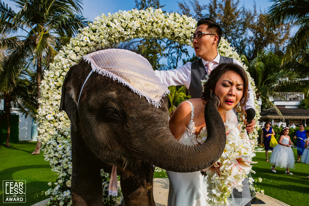 Thailand Katathani Beach Resort Elephant Wedding Kiss Orchids