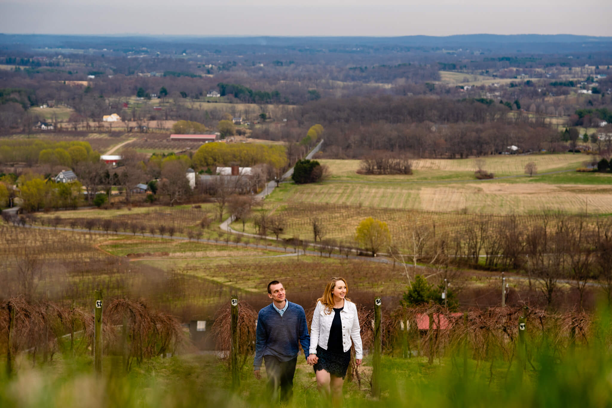 Liz Kevin Bluemont Vineyards Engagement Session Winery Portrait Session Loudon Engaged-3.jpg