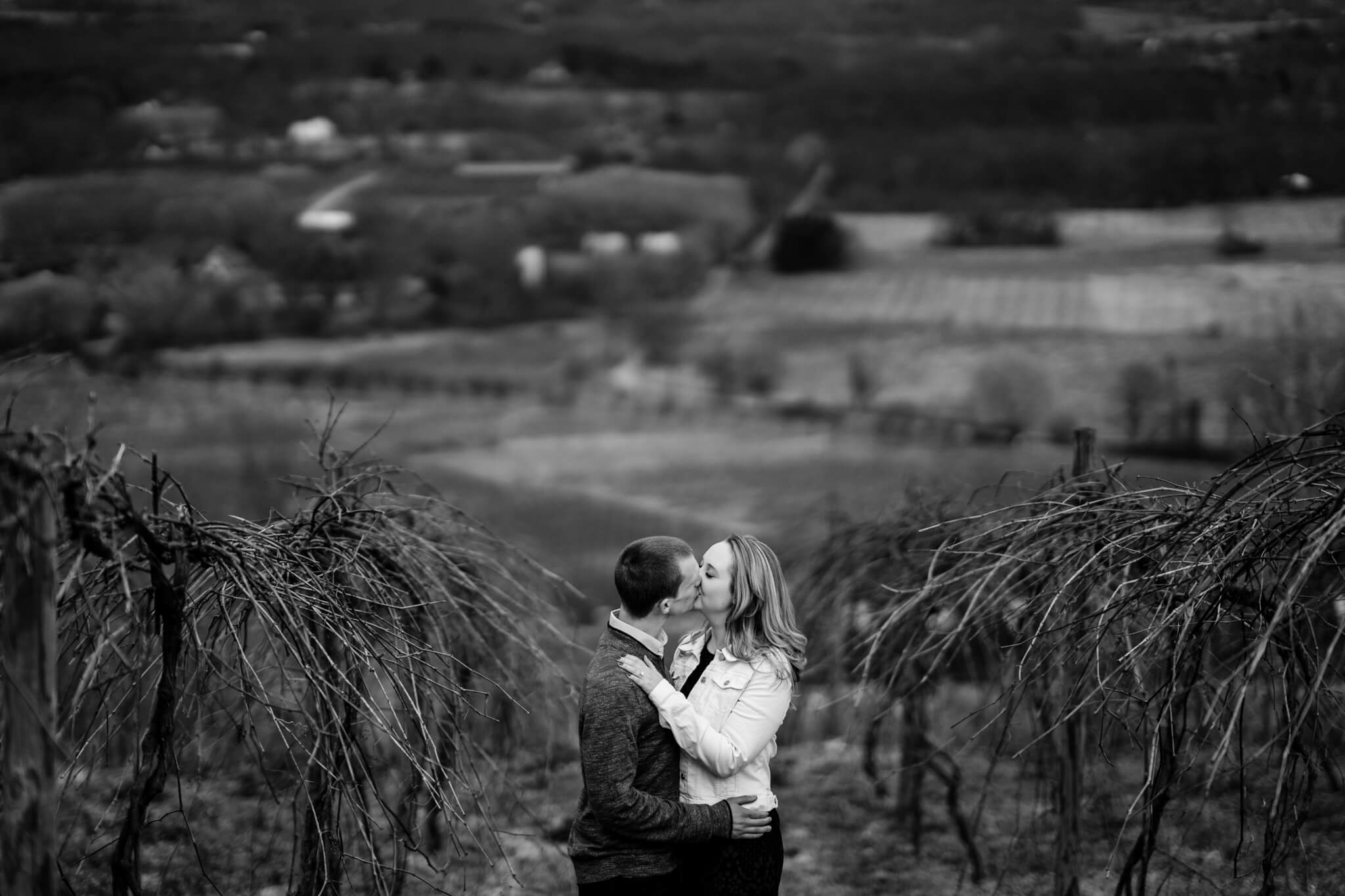 Liz Kevin Bluemont Vineyards Engagement Session Winery Portrait Session Loudon Engaged-4.jpg
