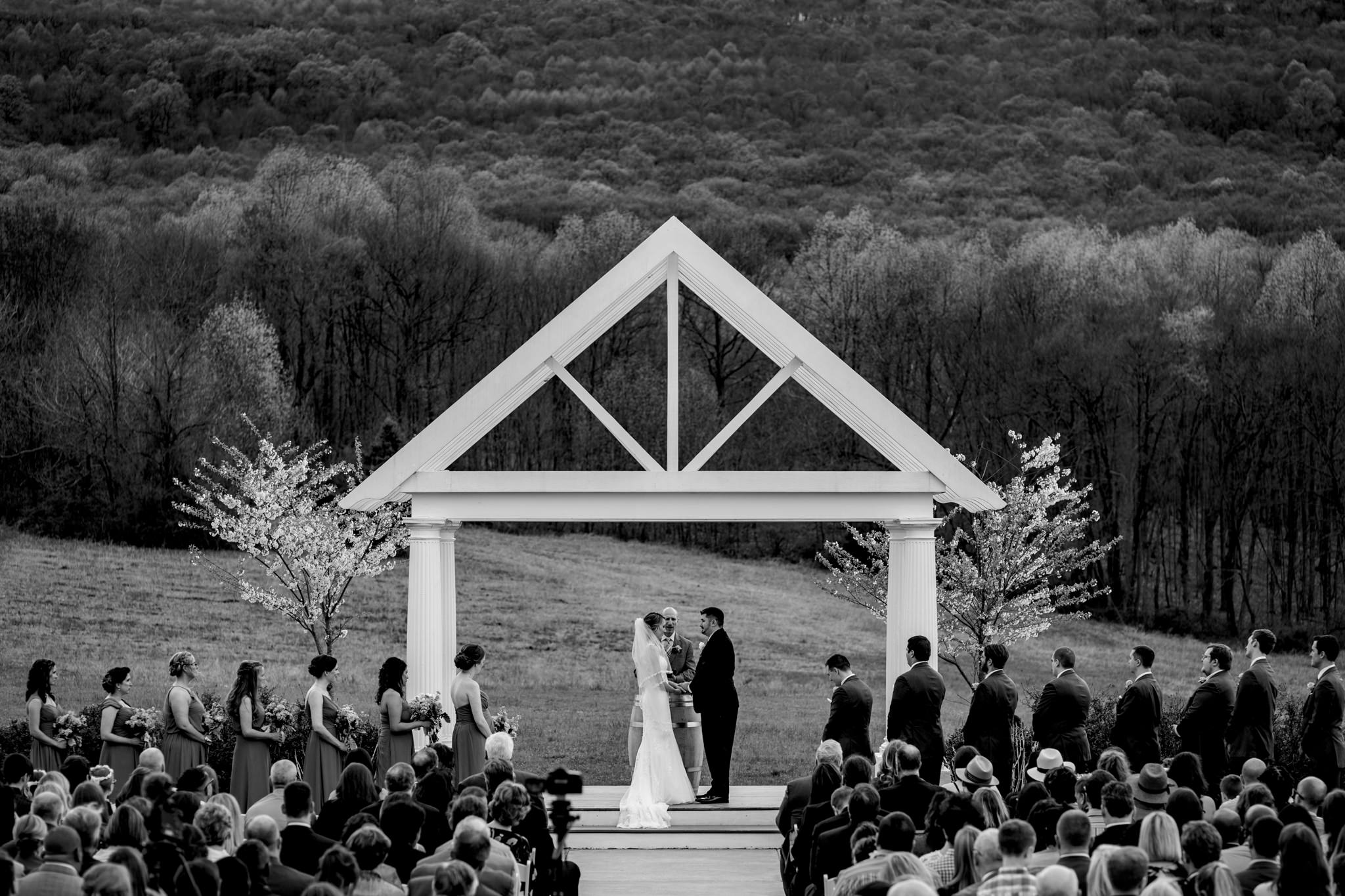 Springfield Manor Winery and Distillery Thornton MD Spring Wedding Photography by Bee Two Sweet-10.jpg