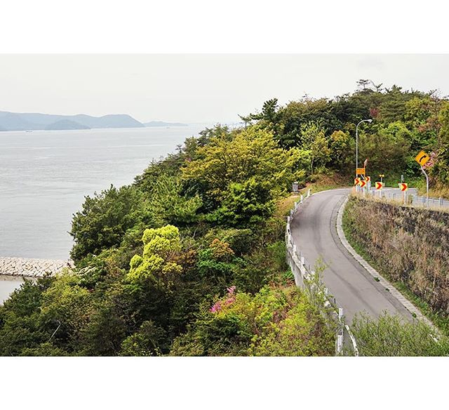Naoshima's windy roads were (mostly) a joy to explore by bike, but even when we faced steep hills Japan's art island rewarded us with fantastic views. From here we could even see Yayoi Kusama's famous Yellow Pumpkin.⁣ .⁣ .⁣ .⁣ .⁣ .⁣ #megalopolist #suitcasetravels #freshairclub #igersjapan #postcardplaces #discoverjapan #passionpassport #japantrip #folktravel #roamtheplanet #modernoutdoors #thediscoverer #simplyadventure #lightzine #unlimitedjapan #traveldeeper #tasteintravel #postcardsfromtheworld #far_eastphotography #travelgram #japan_art_photography #photography_lovers #photographytravel #worldtravelbook #discoverglobe #ig_eternity #visualambassadors⁣ #contemporaryart #naoshima #artandtravel⁣