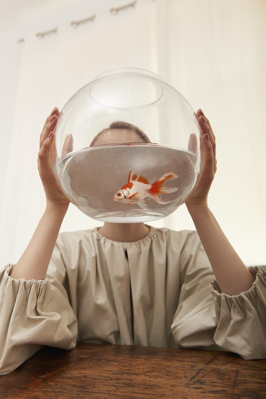 Aquaria by Teresa Ciocia
