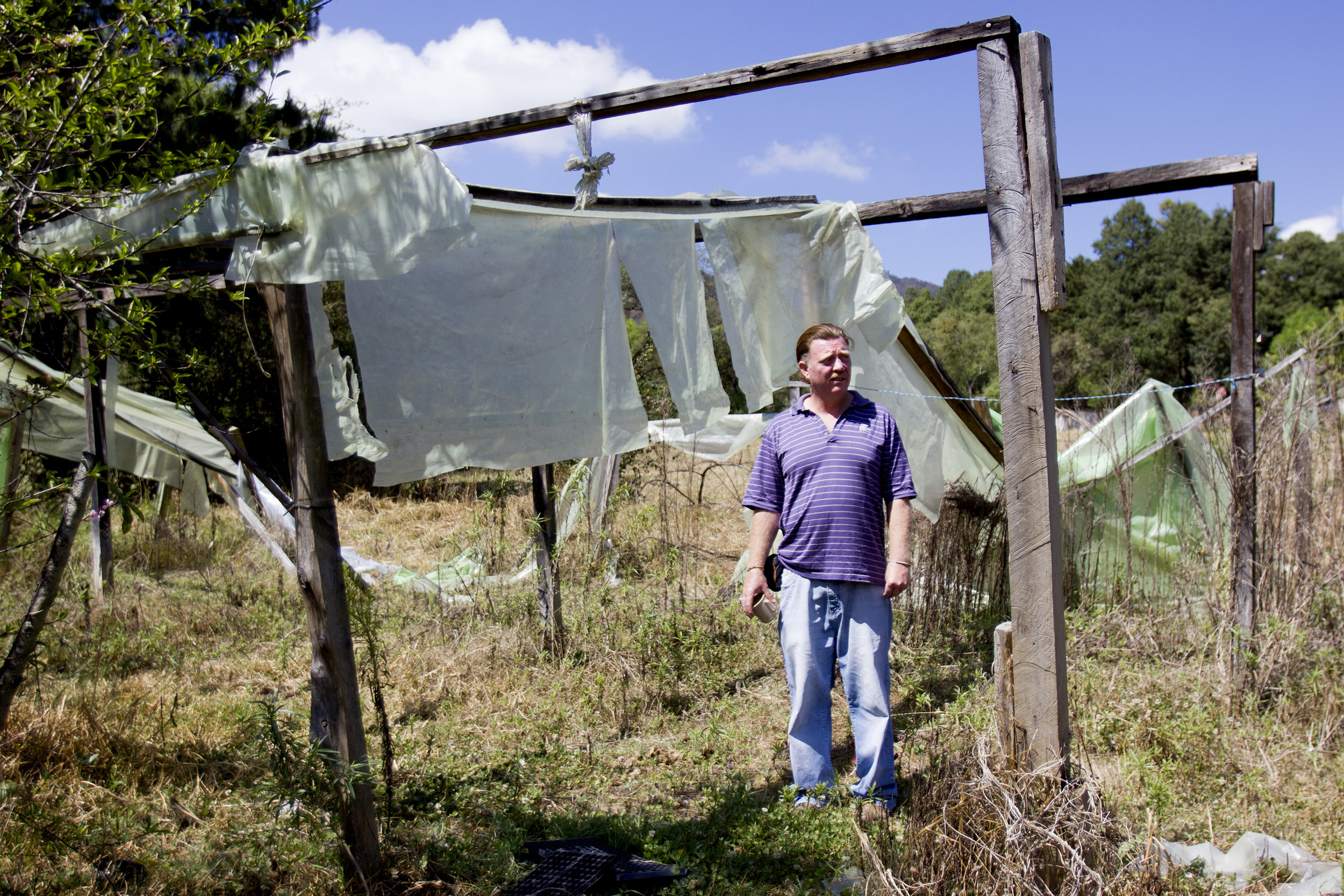 Virgil Edwards inspects what remains of a greenhouse that was built by his mother on the land. His parents bought the 25-acre Rancho El Ar 50 years ago and built it up out of the jungle.