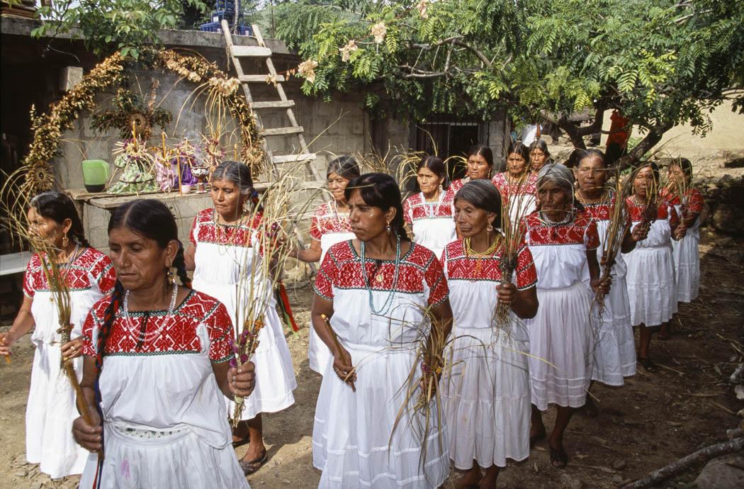 Así como en esta foto del 2003, la gente le hace fiesta al maíz y a todas las plantas de la milpa, vistiéndolo y poniéndolo en el altar. En esta comunidad la fiesta se llama Xicomexochitl y en otras Xicomecoatl.