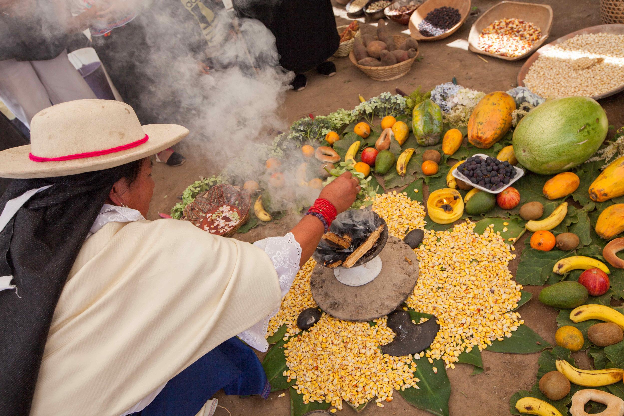 """Josefina Lema, Mojandita, Otavalo, Ecuador, abriendo el espacio para un intercambio de semillas del maíz, septiembre, 2016.  """"Nuestra madre maíz es, para nosotros, para pueblos indigenas, es como mas que oro.Maíz es oro en granito. Es nuestra capital, nuestra vida, la madre maíz.   Como nosotros prendemos palo santo entre todos, avanzamos prender. Unita no avanca prender. Así mismo es el granito también. Entre muchos granitos tienen esfuerza para no caer lancha ni plaga.Por eso nosotros sembramos juntos. Algunos granos tienen mucha fuerza, otros granos tienen debilidad, y entre ellos tienen fuerza."""""""