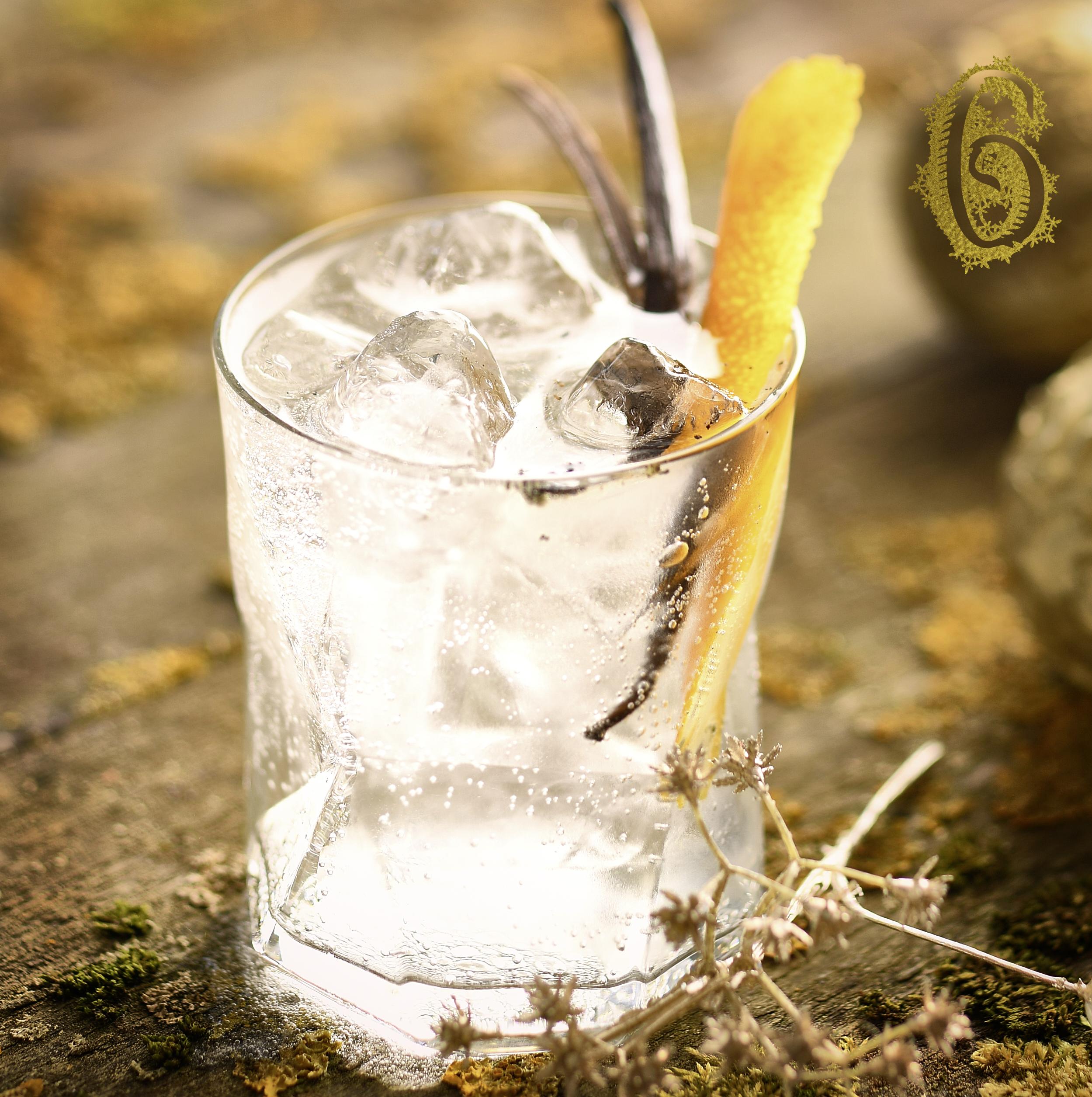 6.Vanilla-Gin-Tonic.jpg