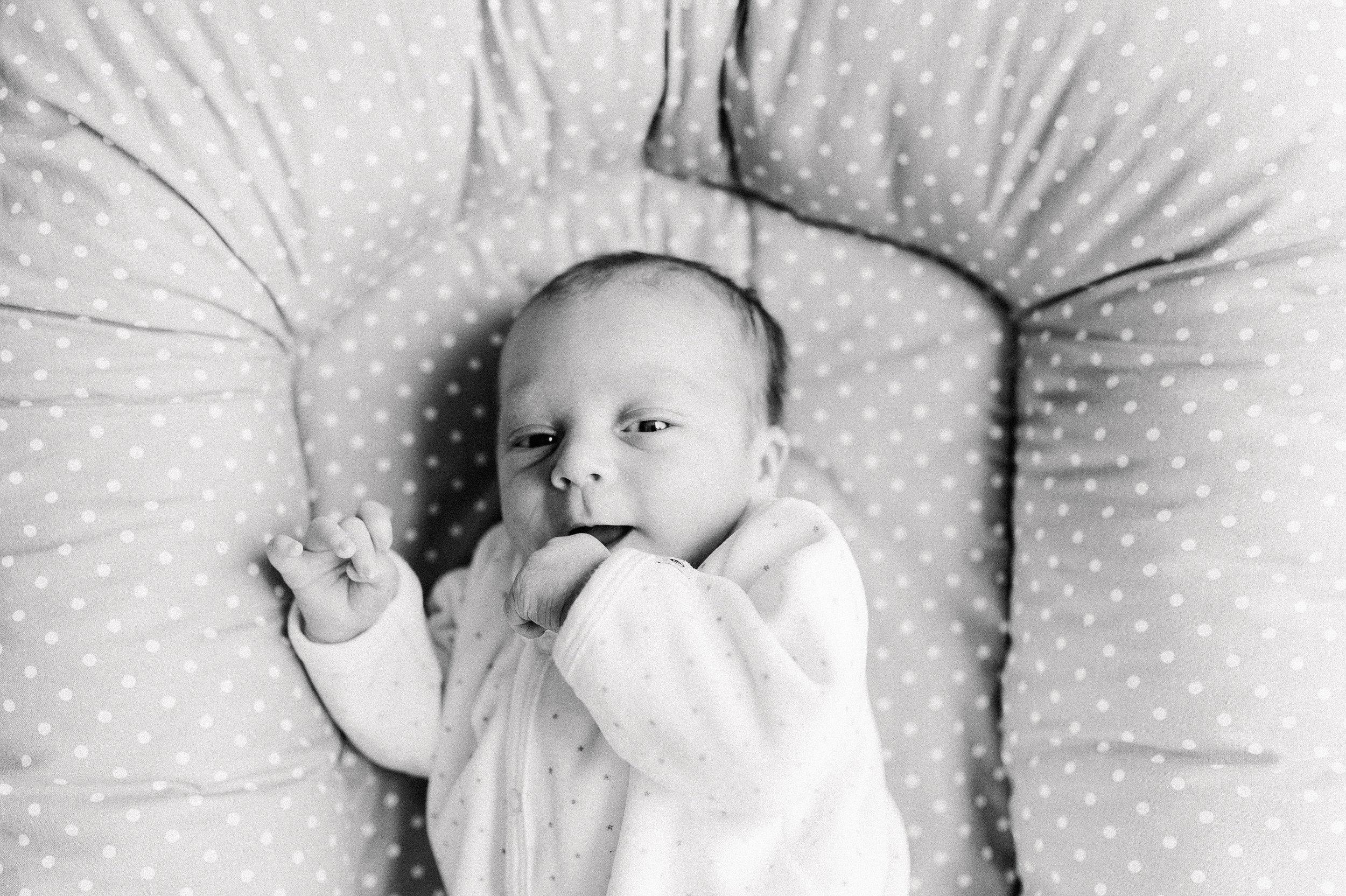 Anna-Hari-Photography-Familienshooting-Neugeborenenshooting-Mannheim-Heidelberg34.jpg
