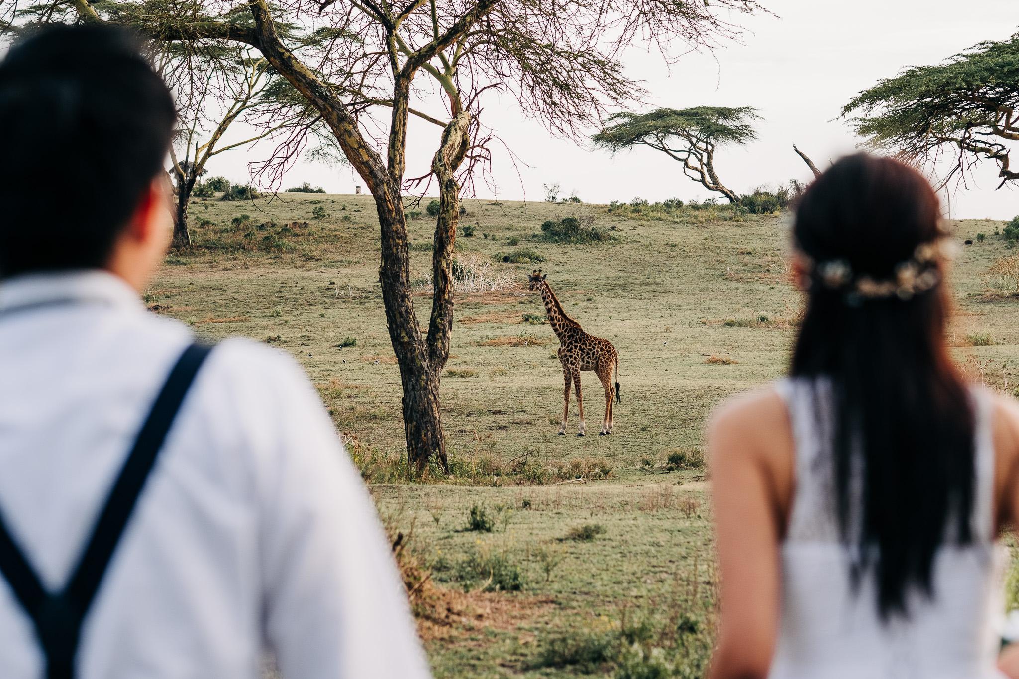 Anna-Hari-Photography-Safari-Elopement-Kenya-Wedding-Photographer-Kenya-80.jpg