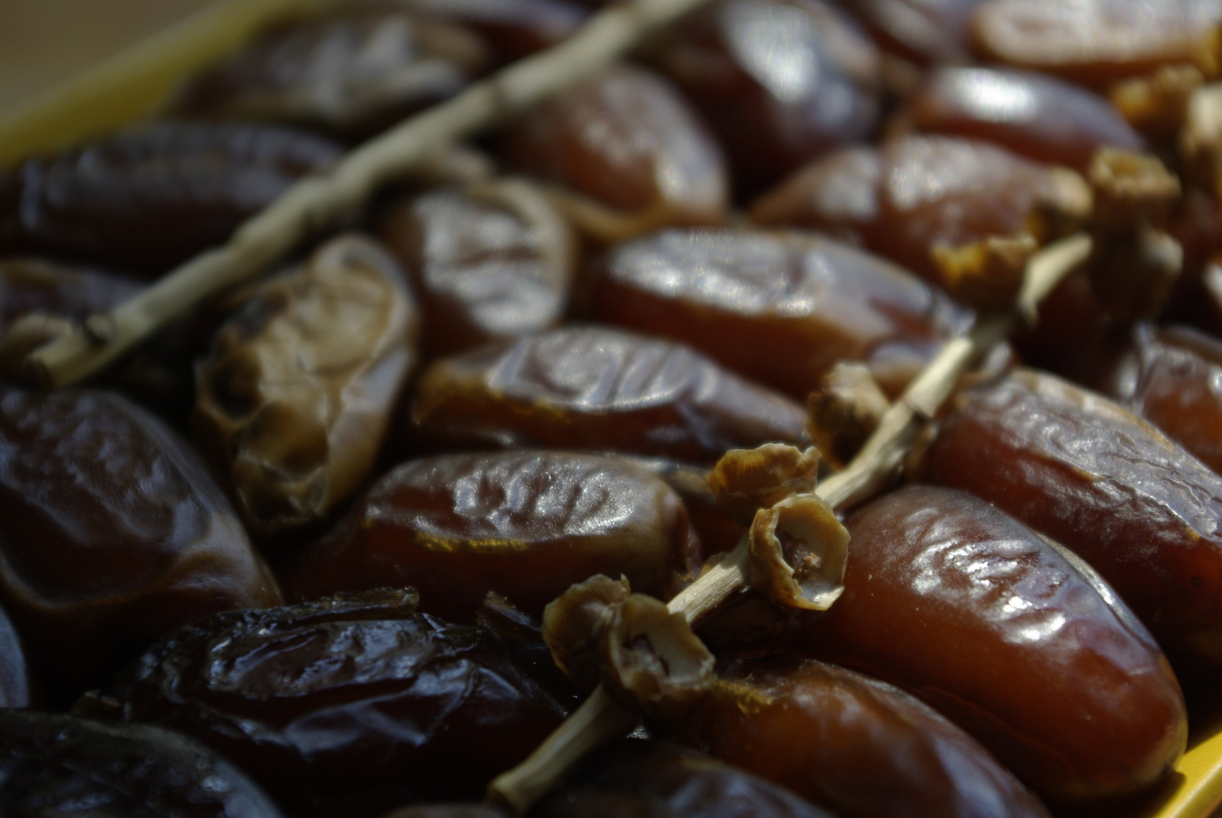Dates The Beauty of Simplicity by Salwa Petersen.jpg