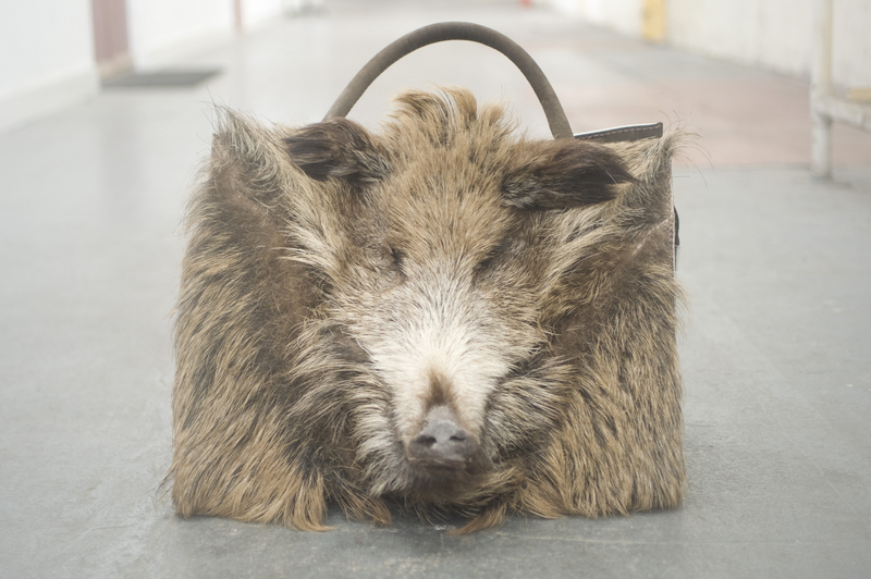 Boar Bag