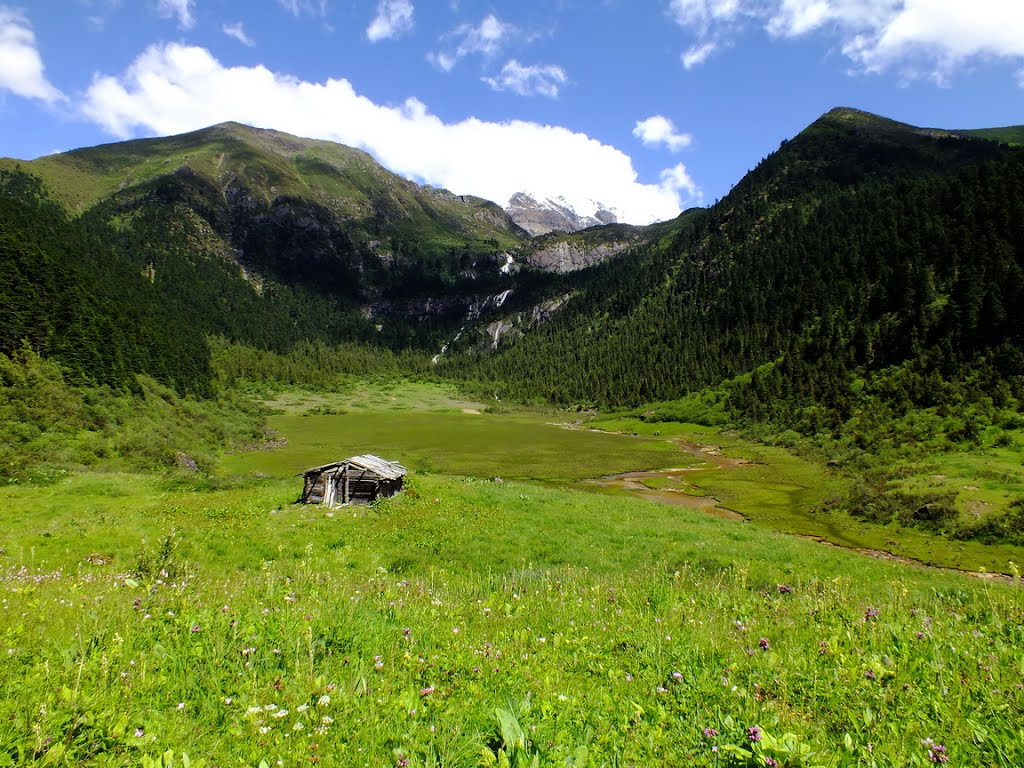 Herdsman's hut near Tong-gyug Valley