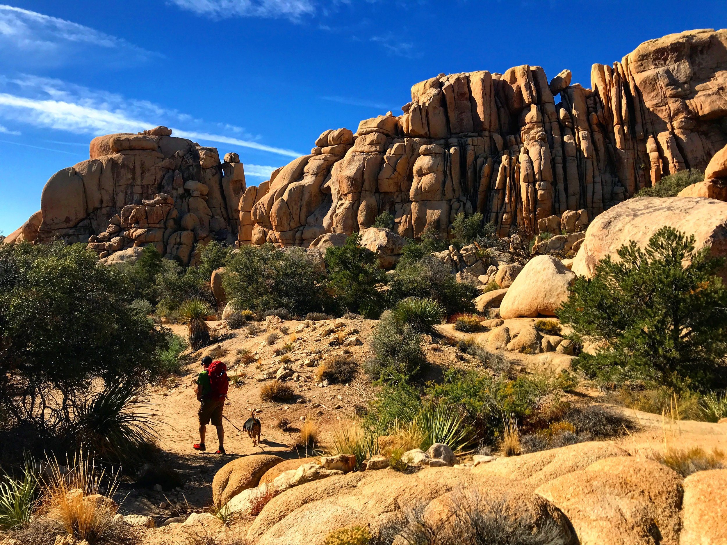 Hiking to our next climbing spot in Joshua Tree National Park.