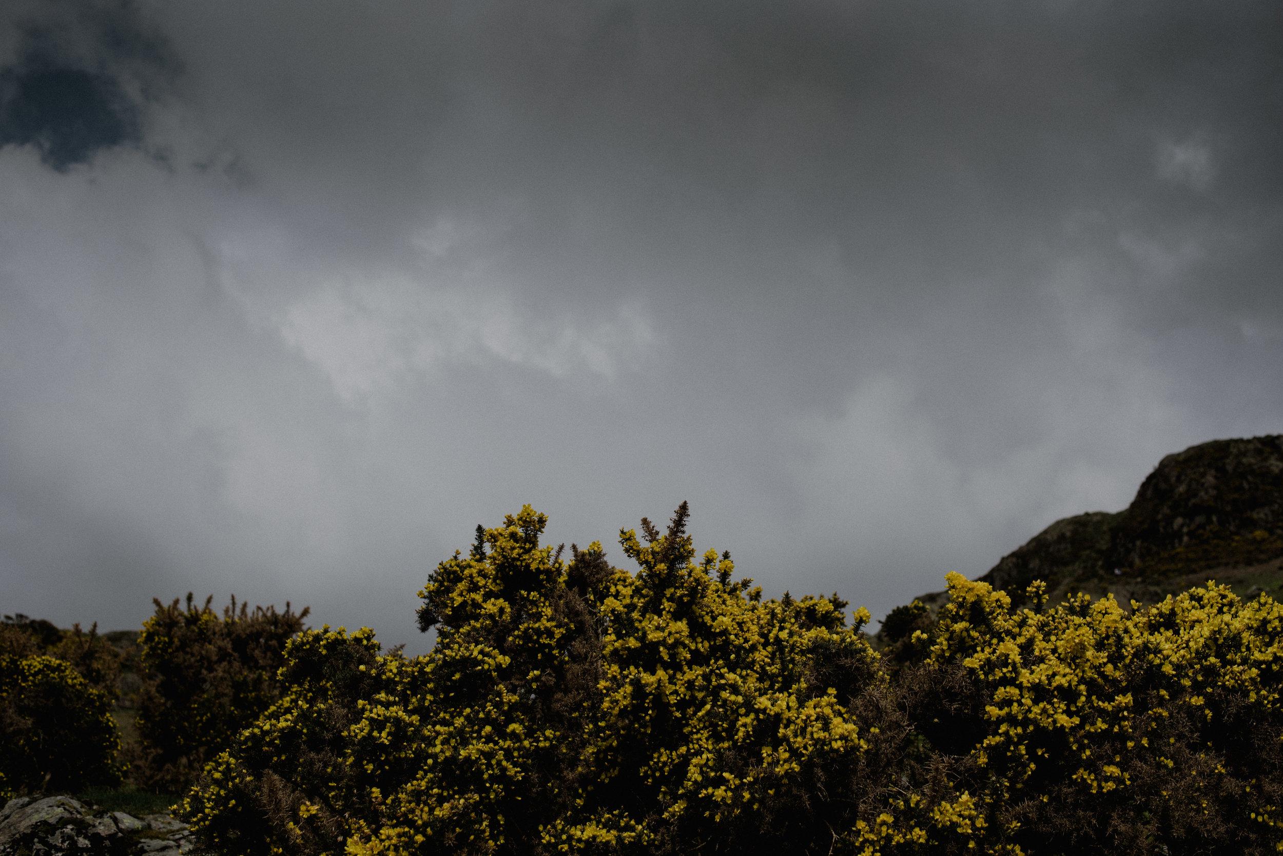 Pura Vida Cornwall Jordana & Ben-37.jpg