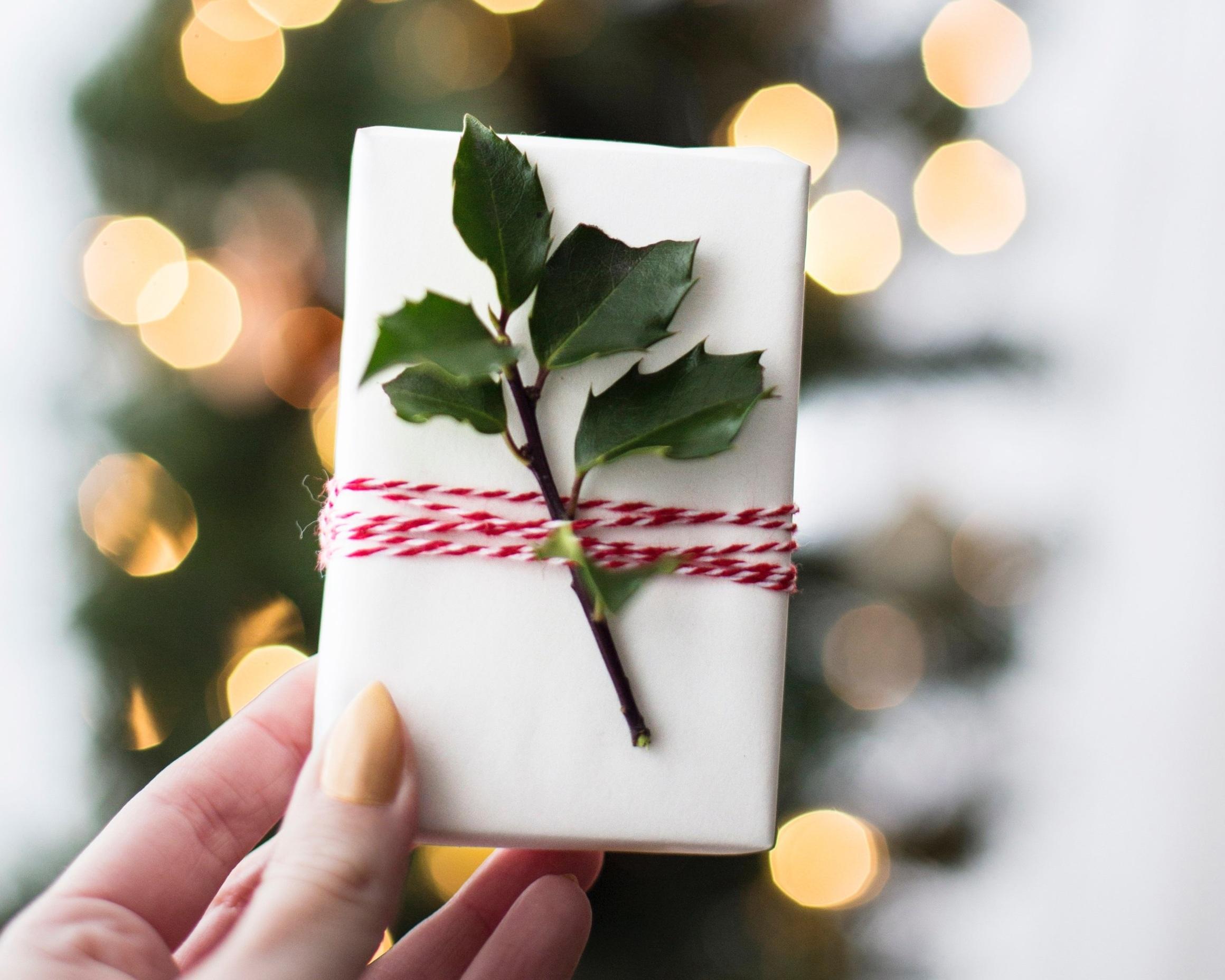 christmas+gift.jpg