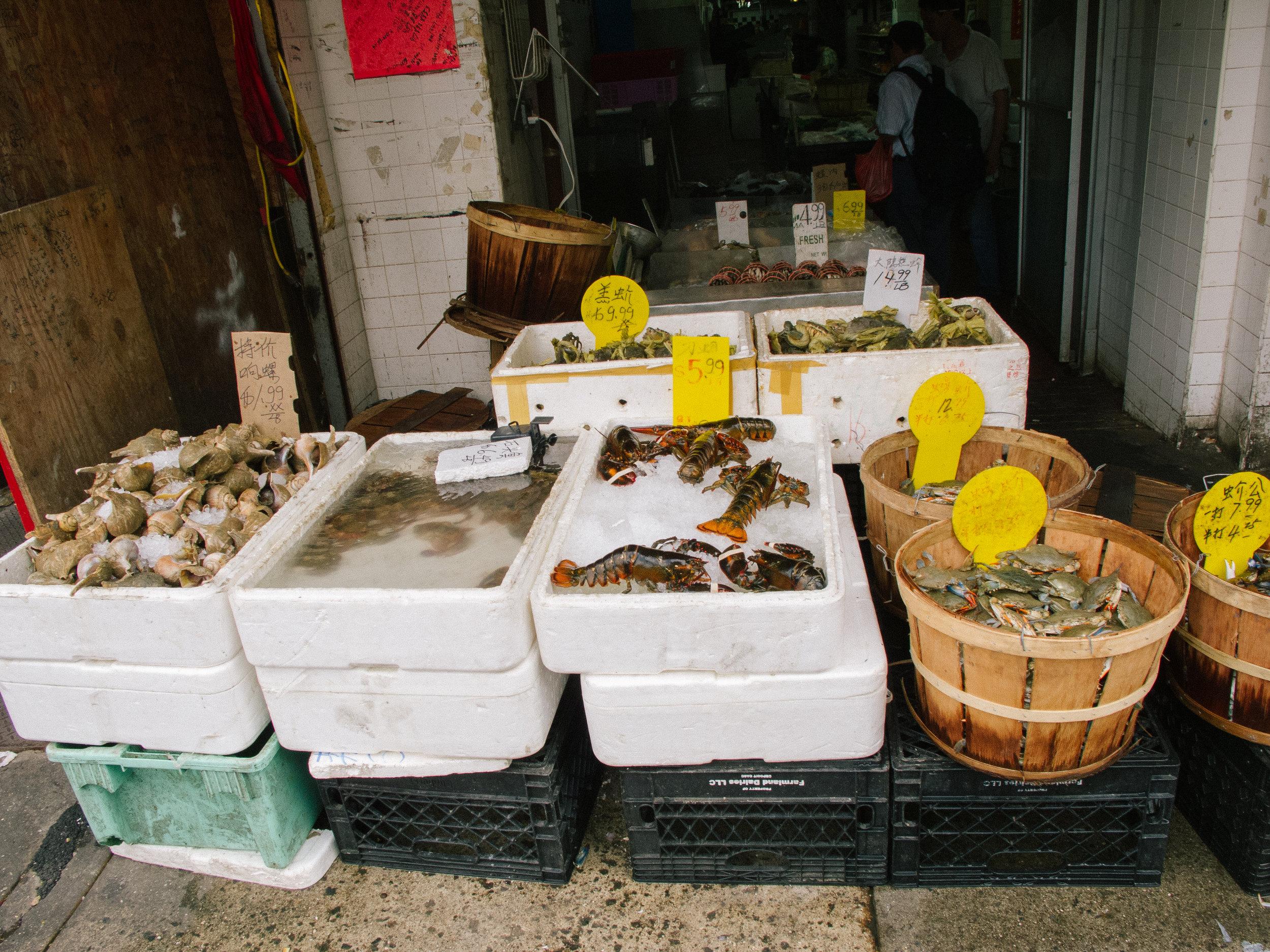 seafood_IMG_1584_100728_.jpg