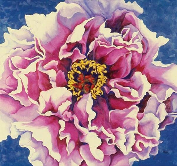 "Peony , Oil on canvas, 28""x30"", 2000"