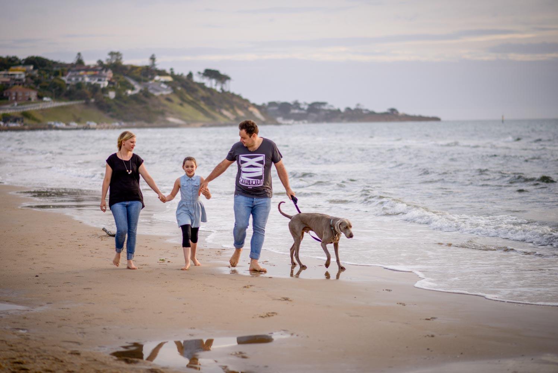 Greg & Jess Photography - Nashville Family Photographer - Dogs