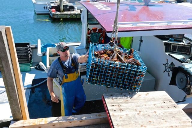 Robinson's Wharf - Lobsterman.jpg