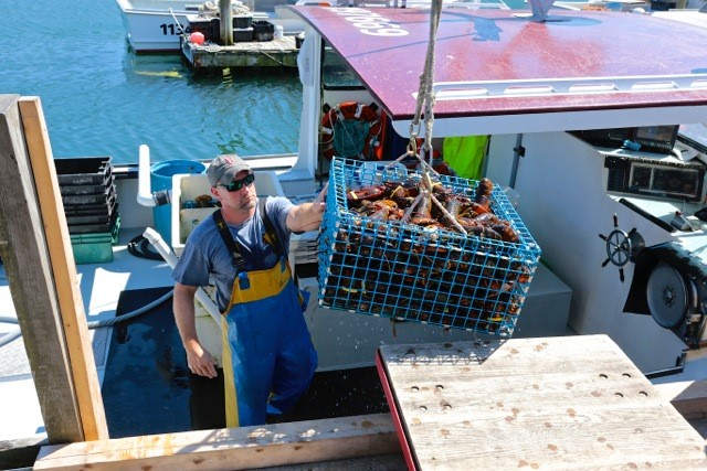 Robinson's Wharf - Lobsterman.jpg