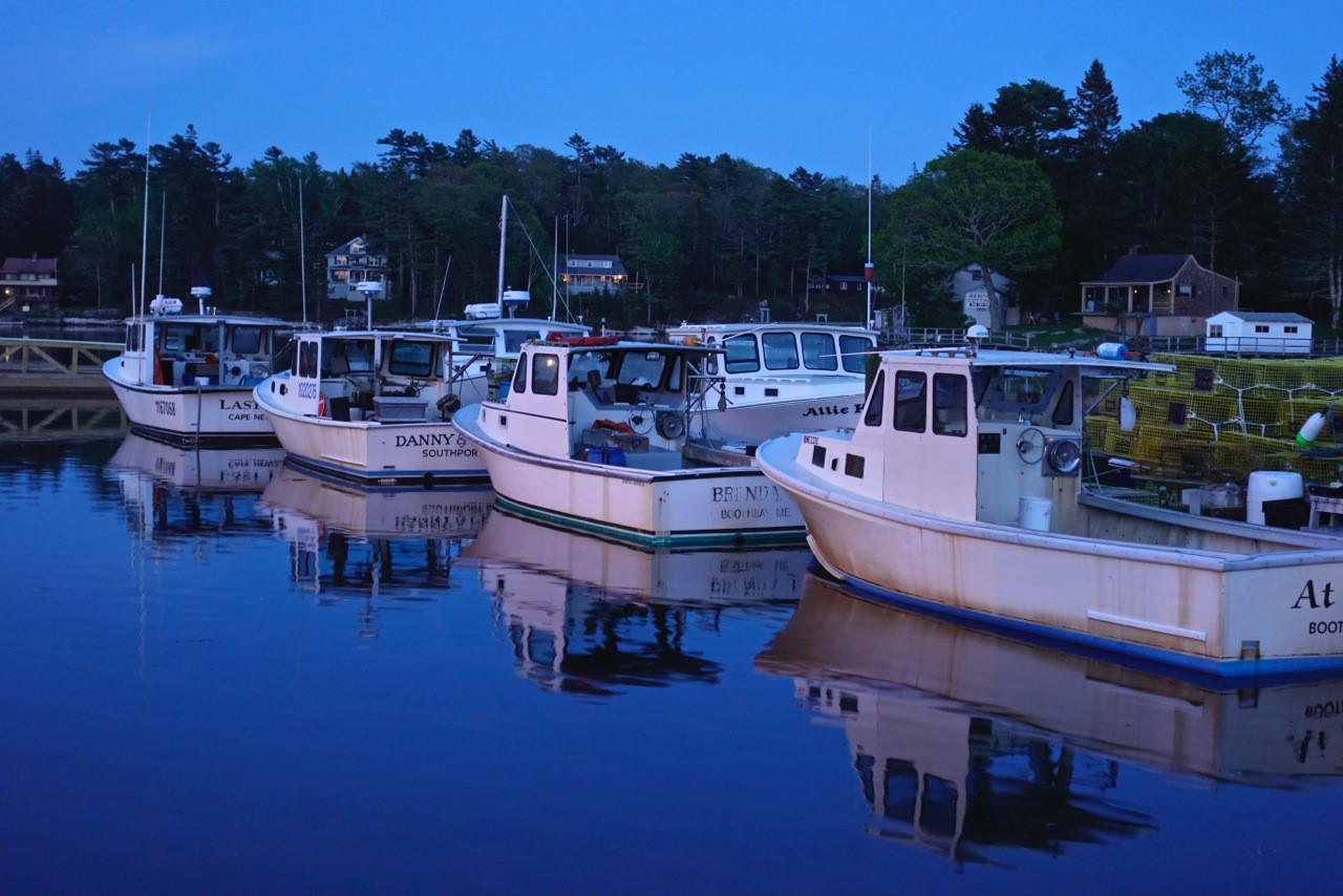 Robinson's Wharf - Boats at night.jpg