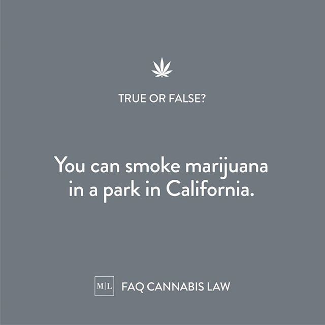 TRUE OR FALSE? Take a guess. There's a lot of false info floating around about cannabis. We'll straighten out the facts for you. What's just a rumor and what's a fact. Take a guess! #420attorneys #manzurilawfaq