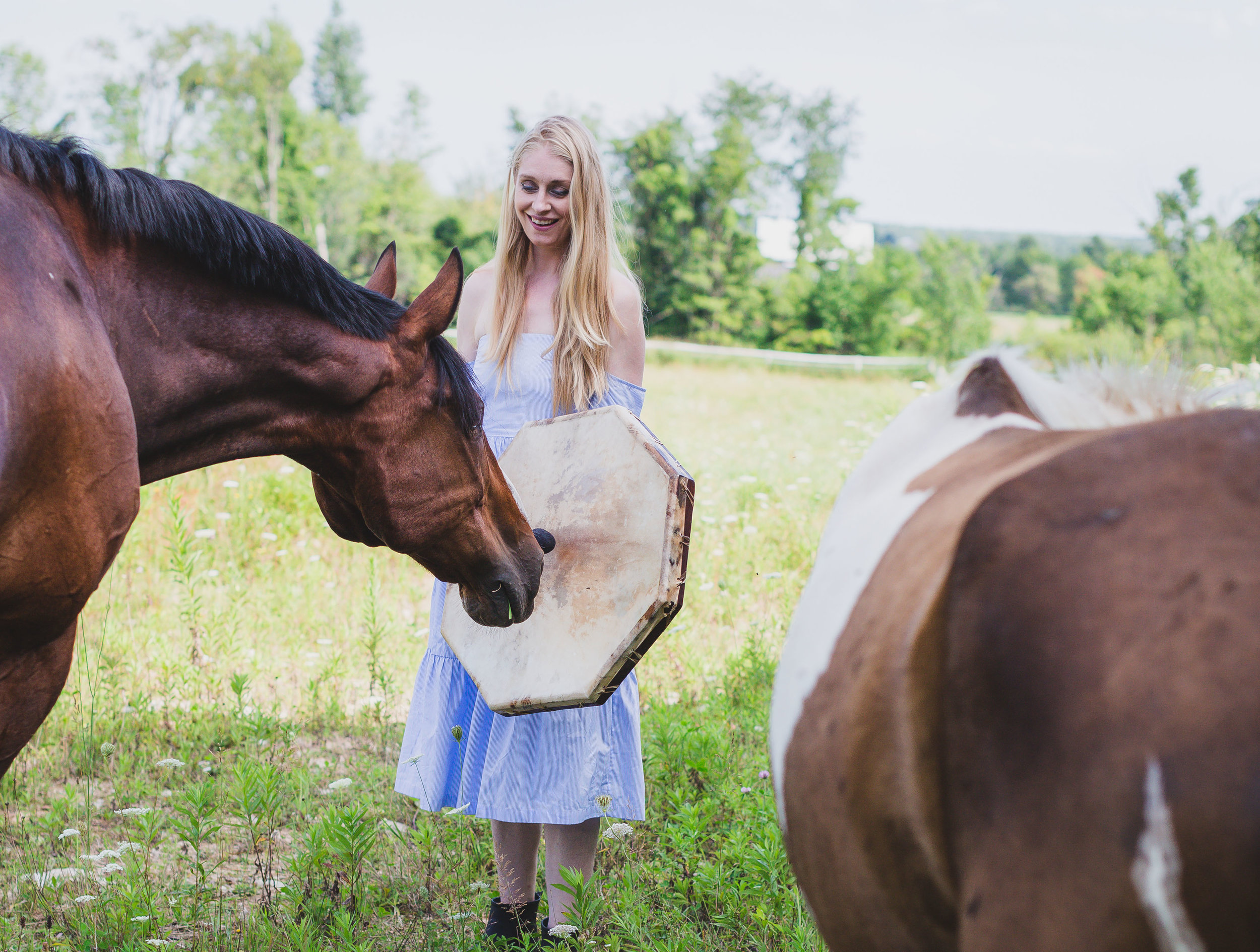 Shelly Burton drumming with Peter and Pippy as part of her healing with horses practice in Erin, Ontario.