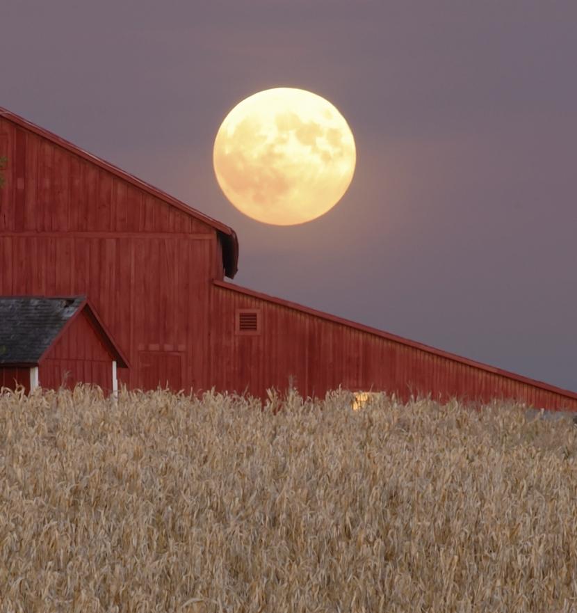 Paragraph-3-Harvest-Moon.jpg