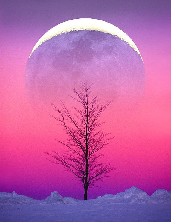 Winter Solstice : Cold Moon promo pic.jpg
