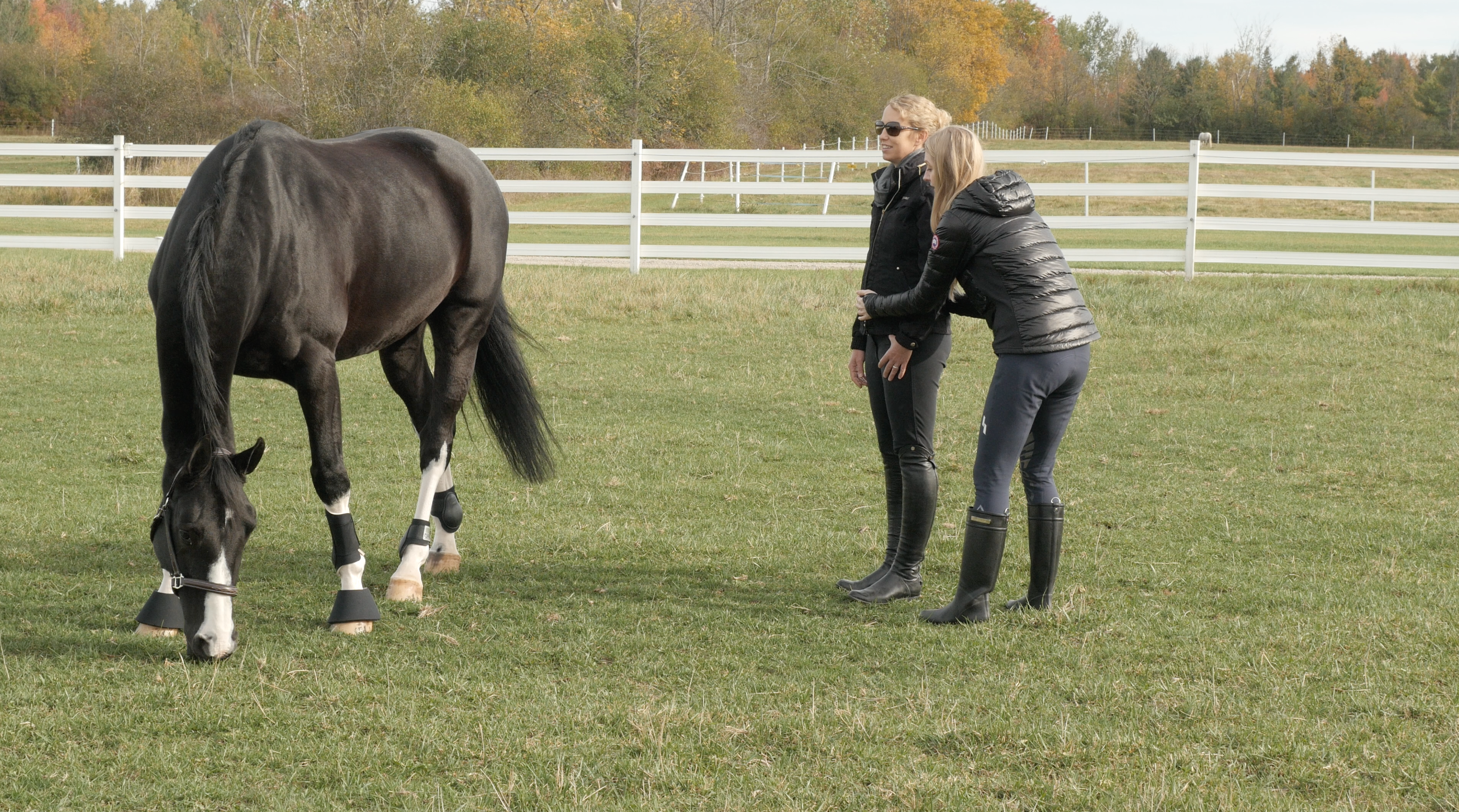 Shelly helping Amy Millar connect with her horse at the sacral chakra.