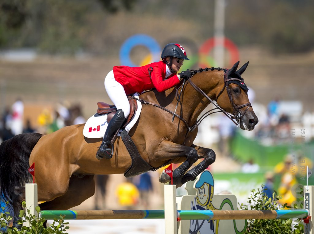 """Horse Medicine is a useful tool for getting to know your animals and maximizing your potential,"" says  Olympian Amy Millar  ."