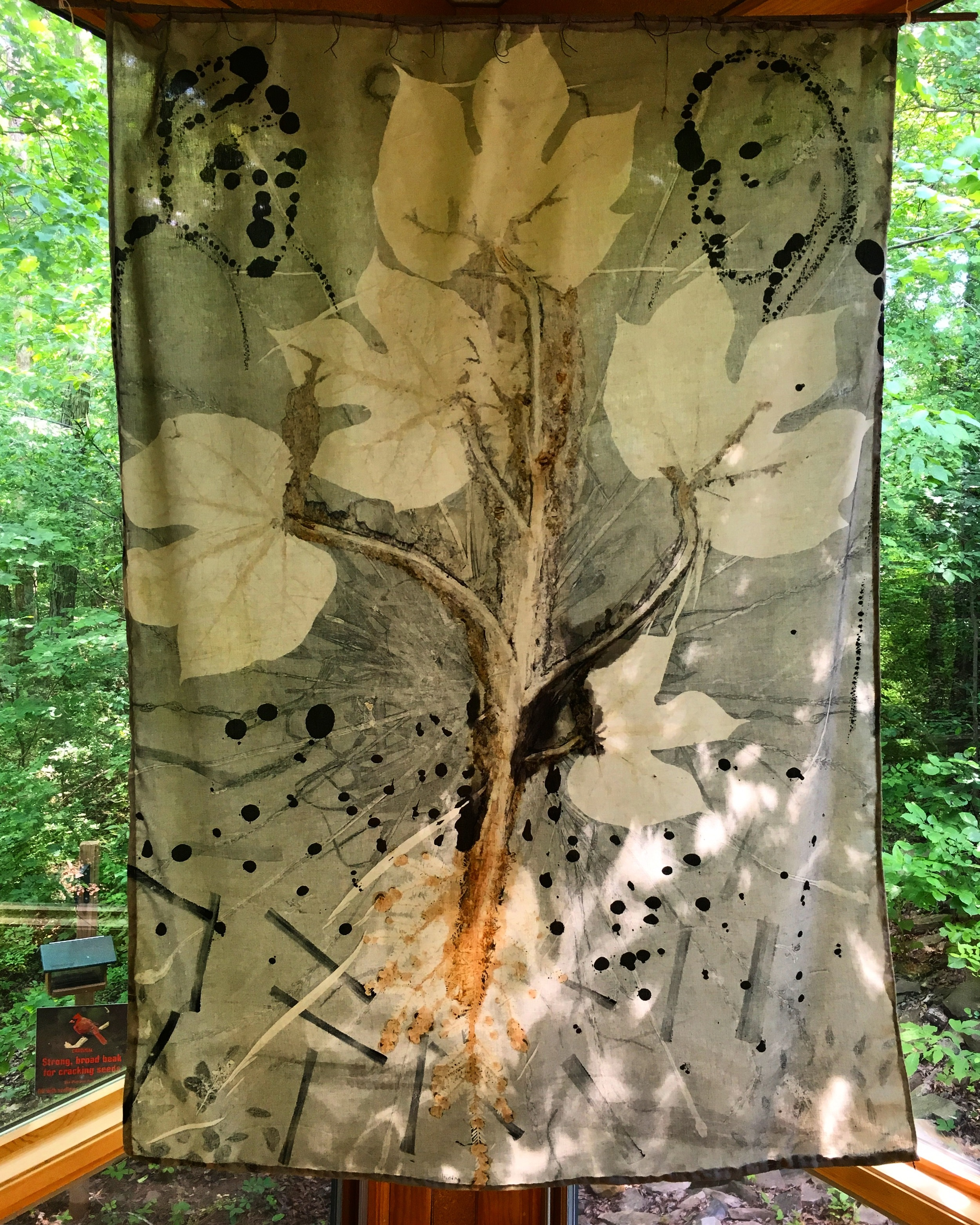 """""""Hiding"""", Celeste Amparo Pfau, botanical mono print with ink drawing on green cotton fabric. This is just one of many pieces in Eco Stories, an exhibition of work by local artists in conversation with nature. Check it out today at the Nature Center!"""