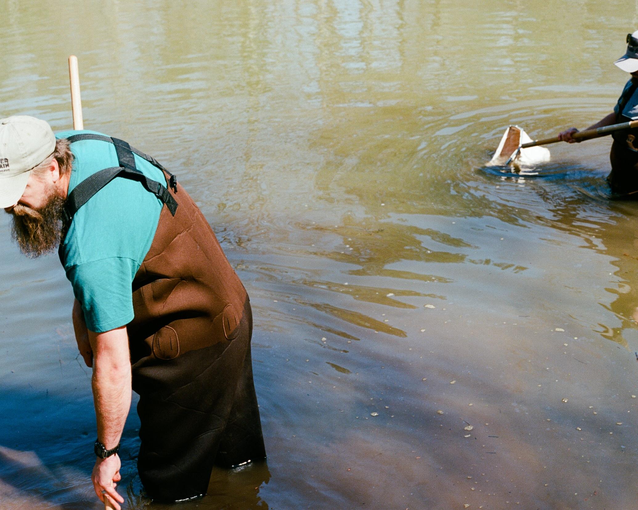 Jamie-Reid-Wetlands.jpg