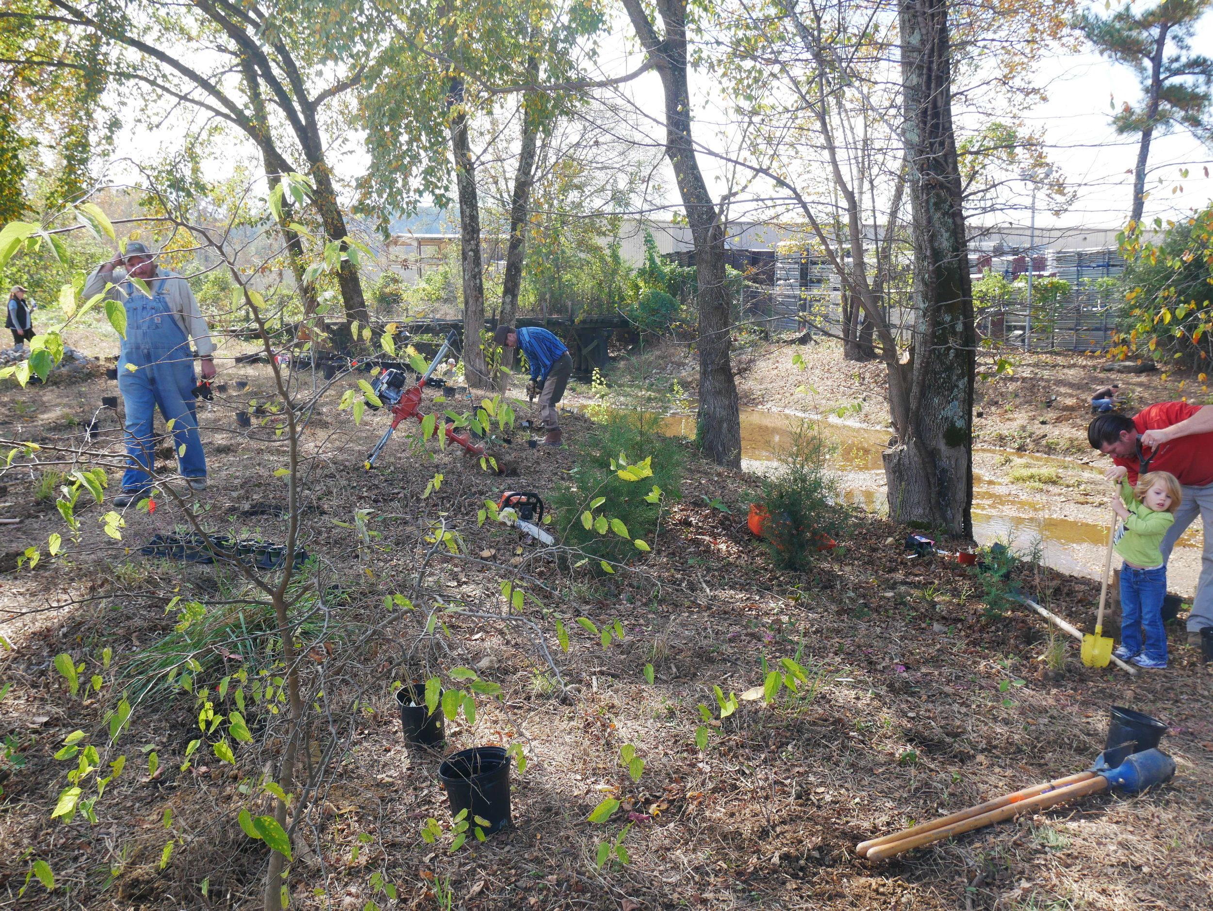 Shades Creek Restoration V.JPG