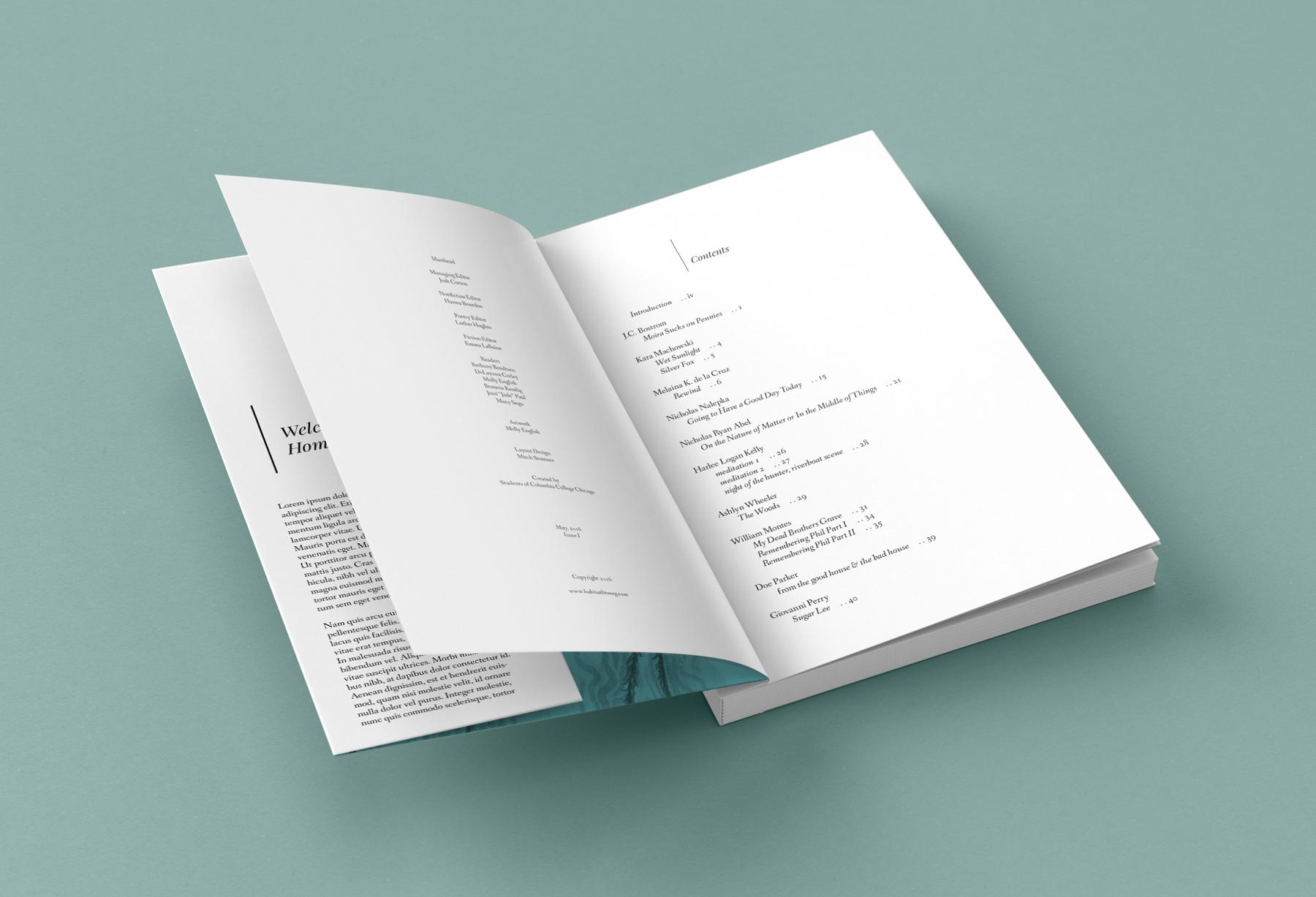 HABITAT-MAG_Book_Mockup_4.jpg