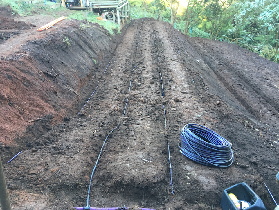 Installing the Pressure Compensating Irrigation
