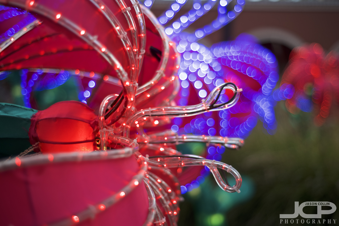 A close-up look at the lights of the Chinese Lantern Festival in Albuquerque, New Mexico - Nikon D750 with Nikkor 50mm f/1.8D @ f/2 1/250th ISO 100