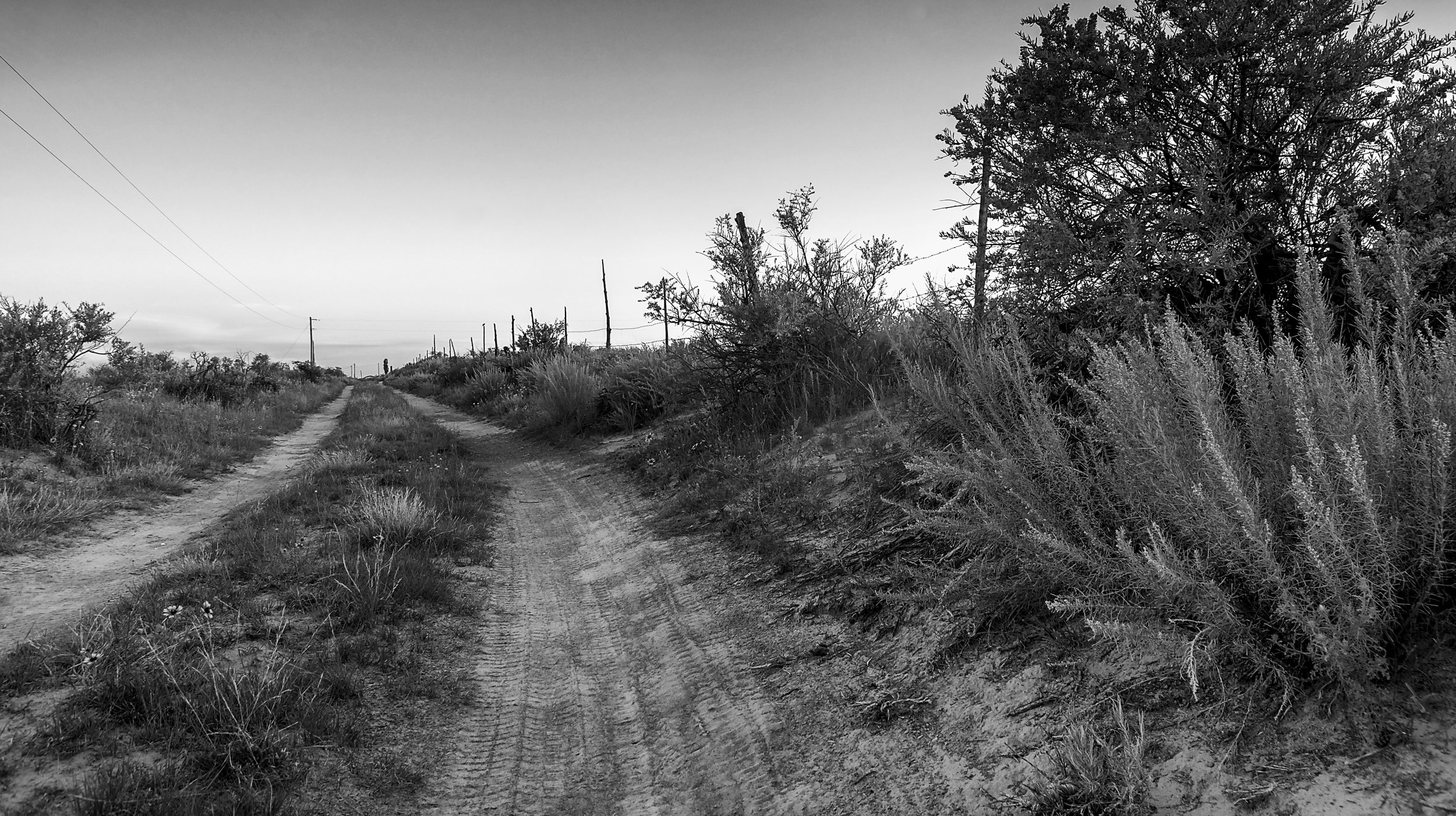 Black White Very Rural Road