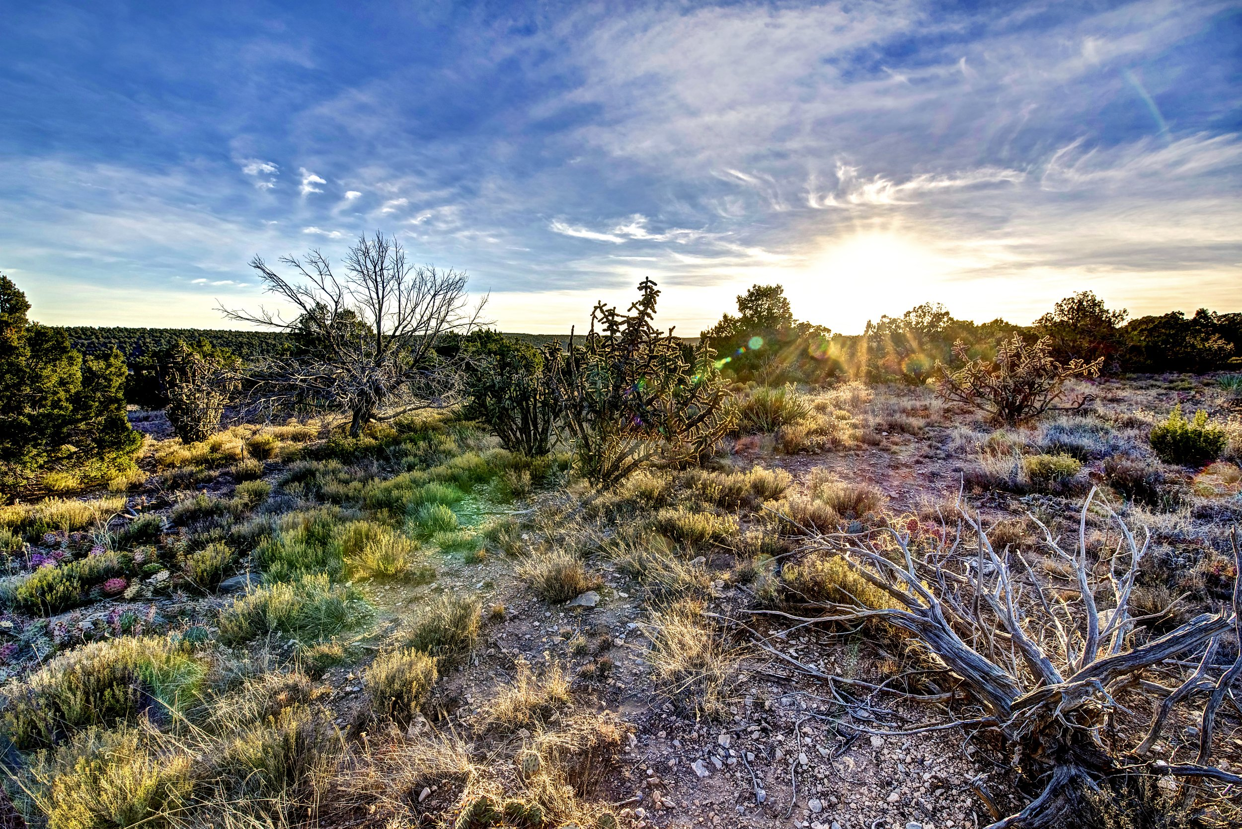 Surreal Santa Fe County Sunset