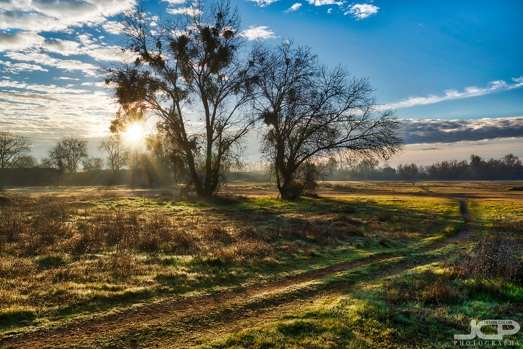 Paths behind horse stables in Sacramento, California during the first sunrise of 2018 - Nikon D750 with Tamron 15-30mm f/2.8 SP tripod mounted 7-bracket HDR
