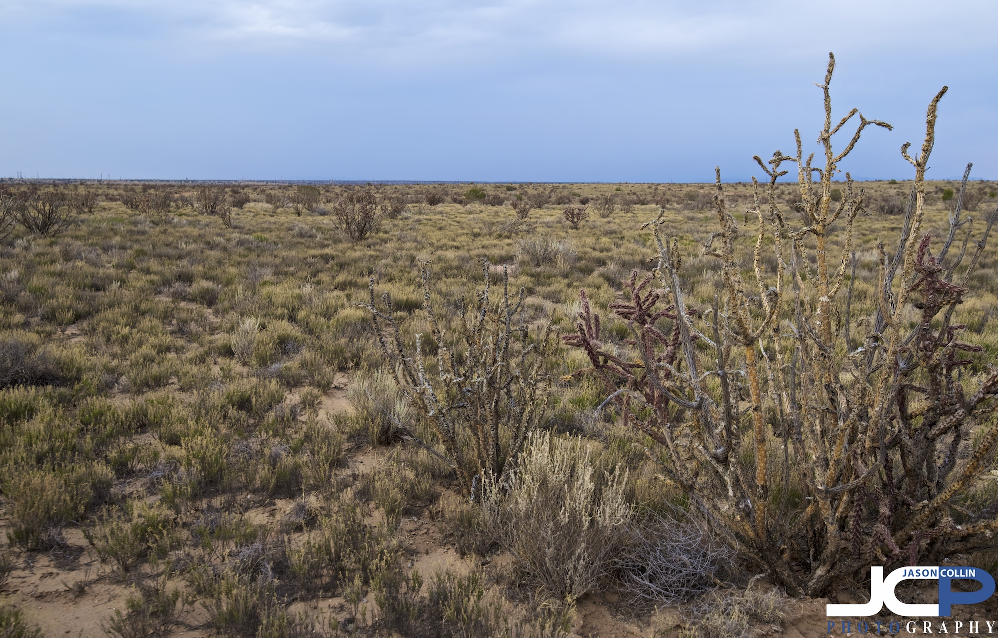 SNNM-2244-rio-rancho-89158.jpg
