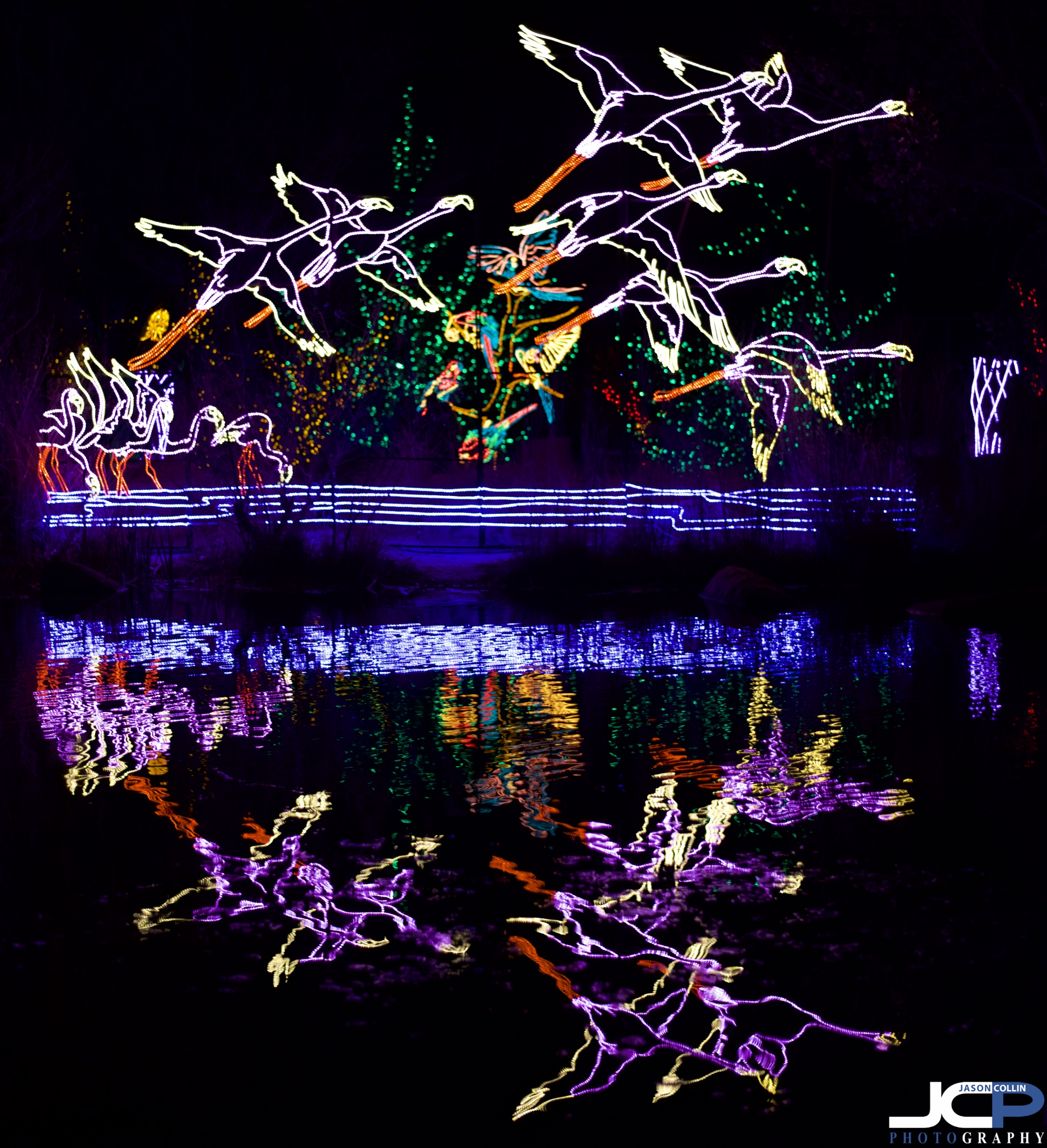 river of lights ABQ reflection