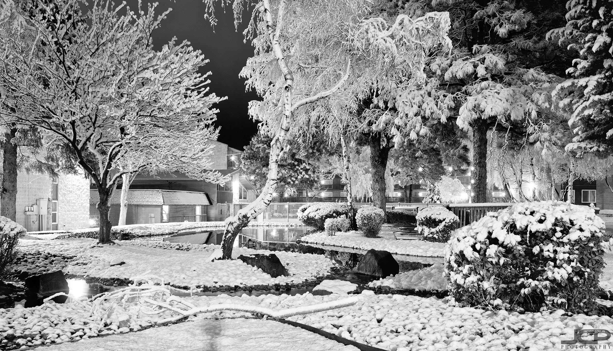 snow-2-22-2019-abq-121421.jpg
