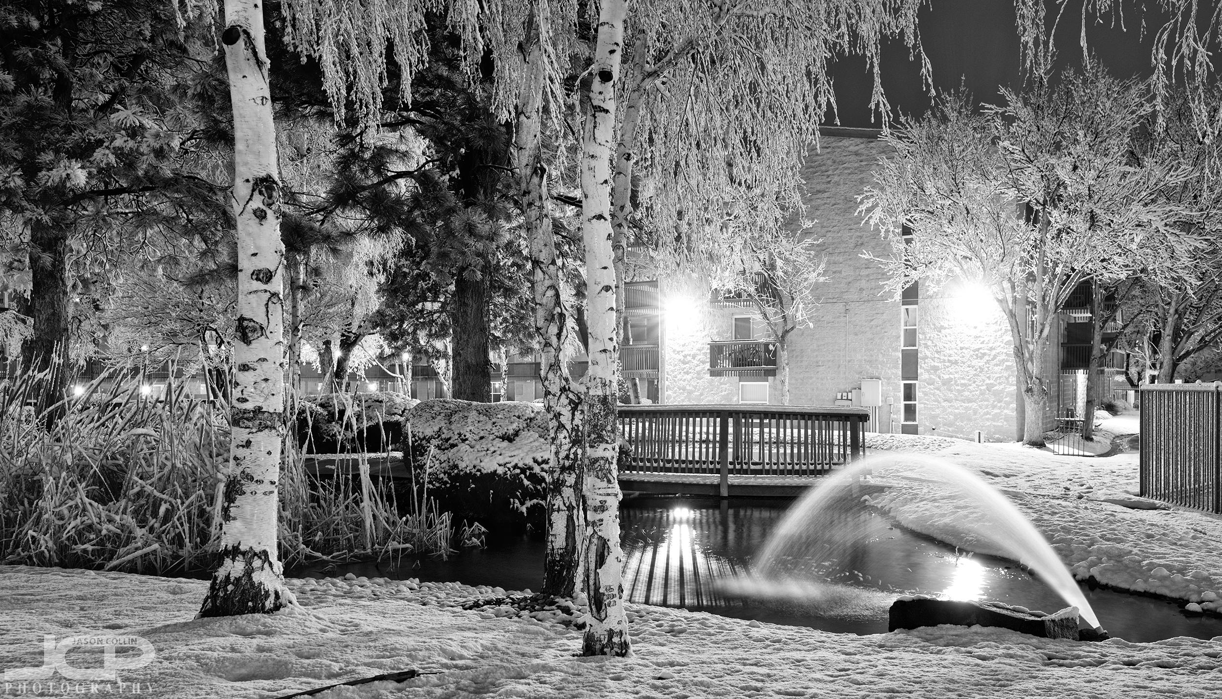 snow-2-22-2019-abq-121424.jpg