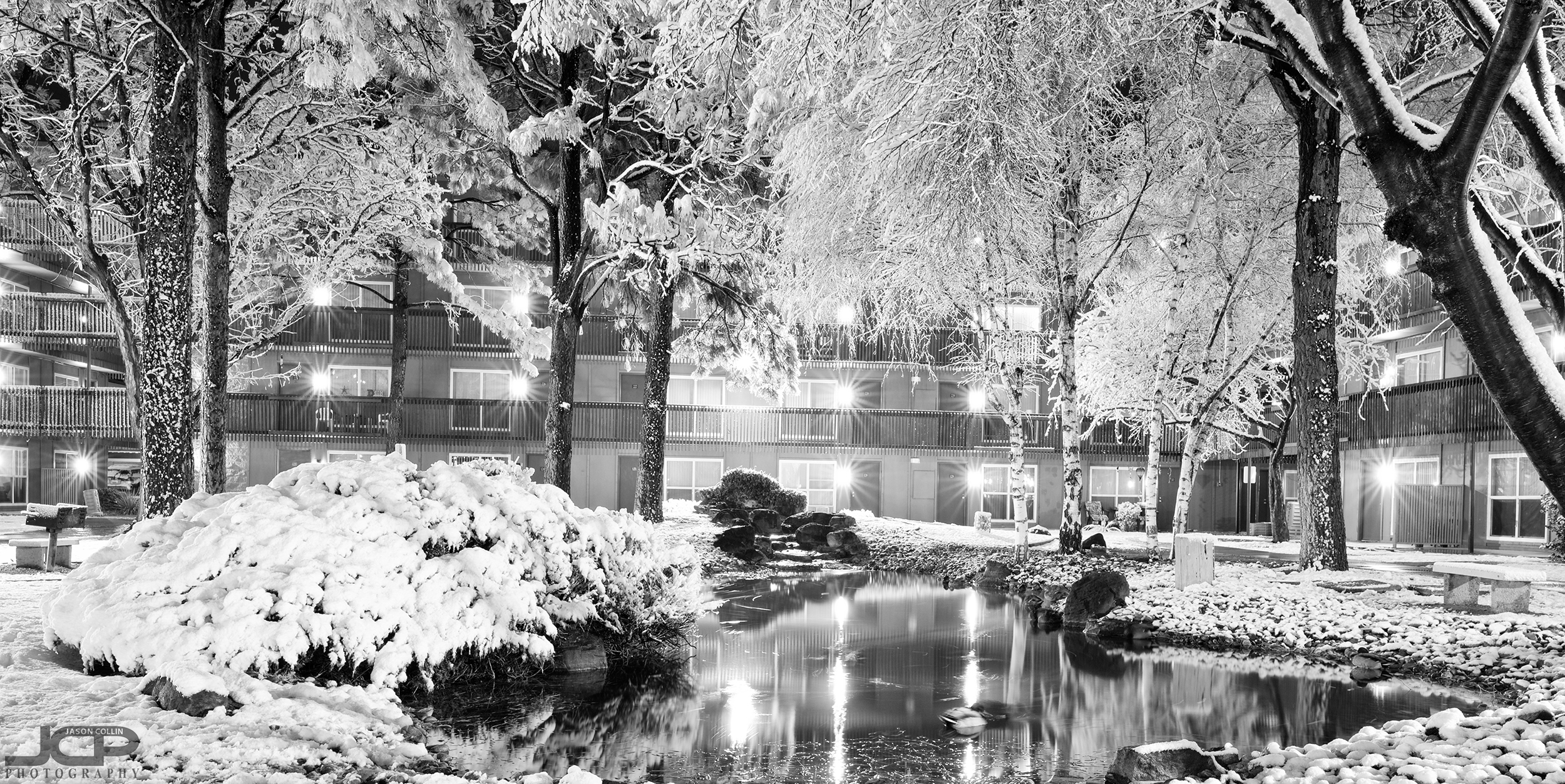 snow-2-22-2019-abq-121432.jpg