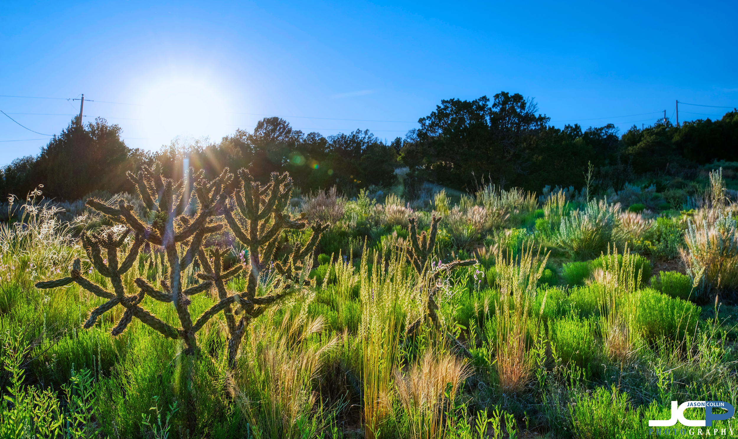 Making rural land real estate look beautiful in Edgewood New Mexico