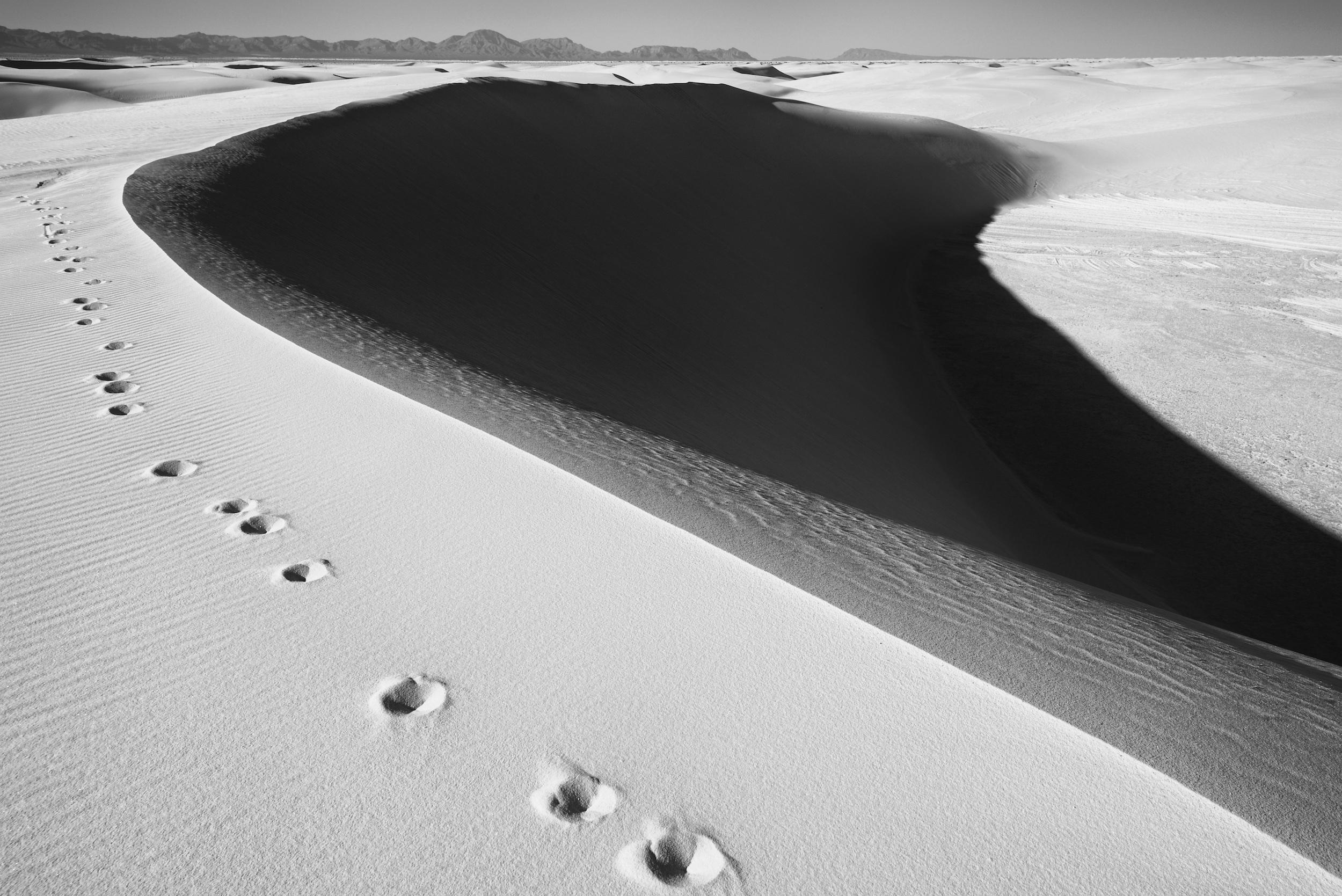 white-sands-2-24-2018-nm-84963 (1).jpg