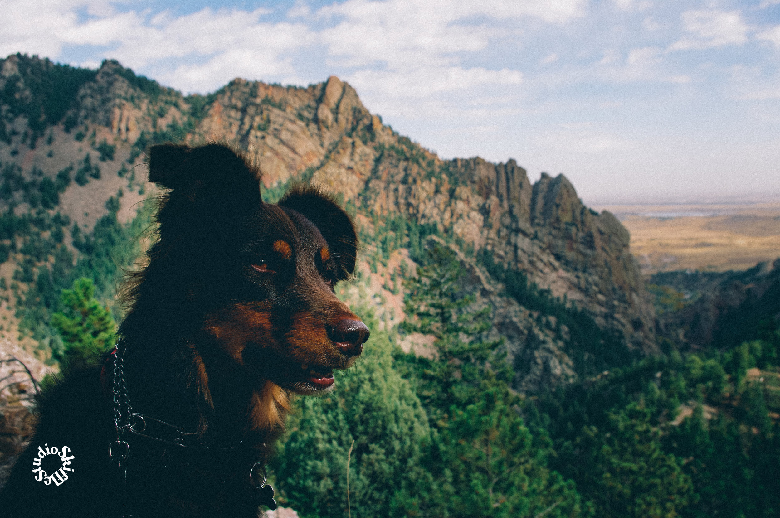 With love from Eldorado Canyon State Park!