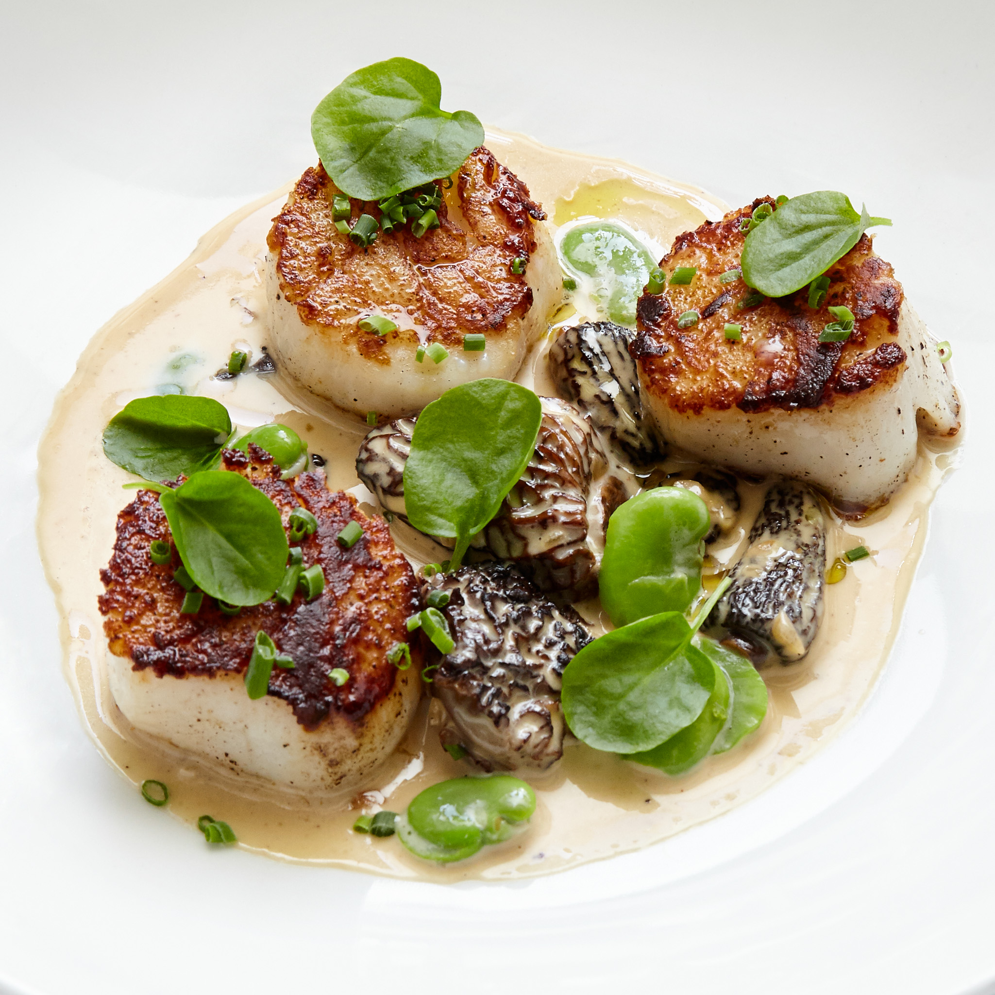 Michael's Restaurant Scallops Photo.